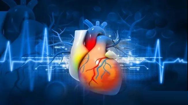 缓慢、稳定地增加运动强度对心脏健康最有利